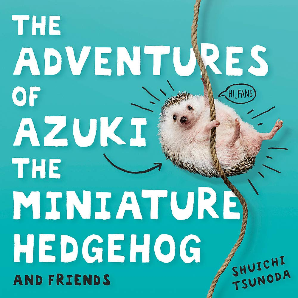 The Adventures of Azuki the Miniature Hedgehog and Friends