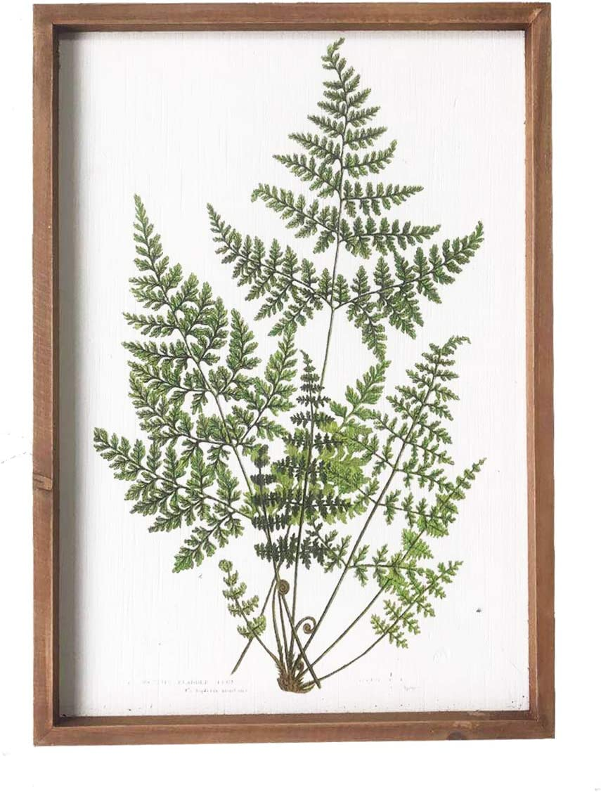 "NIKKY HOME 20"" x 14"" Vintage Framed Green Fern Botanical Wall Art Picture Prints Wall Decor"