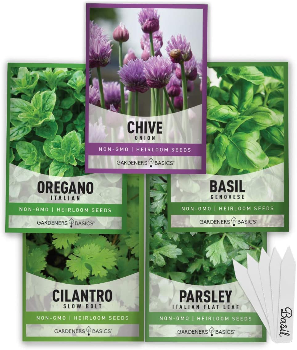 Culinary Herb Seeds For Planting Indoors and Outdoors 5 Herbs Seed Packets Including Basil, Cilantro, Chives, Oregano, and Parsley - Great for Kitchen Herb Garden Heirloom Herb Seeds - Gardners Basics