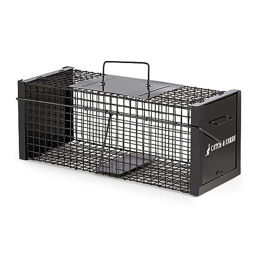 oneConcept Catch & Carry M - Trampa para roedores, Captura ...