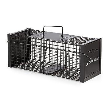 oneConcept Catch & Carry M • Trampa para roedores • Captura animales pequeños • Atrapa animal vivo • 20x20x50cm • 2 entradas • Jaula de acero 2mm • ...