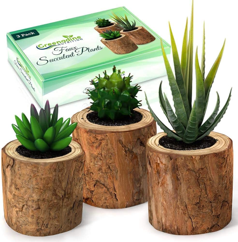 Artificial Succulent Plants Potted & Fake Cactus - Set of 3 - Face Succulent Plants in Pots - Feaux Succulent Plants in Pots for Home, Desk, Bedroom, Kitchen, Bathroom, Bookshelf - Office Decorations