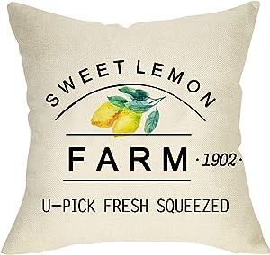 FBCOO Sweet Lemon Farm Home Decorative Throw Pillow Cover, Farmhouse Summer Cushion Case, Spring Home Decorations Square Pillowcase Decor for Sofa Couch 18 x 18 Inch Cotton Linen
