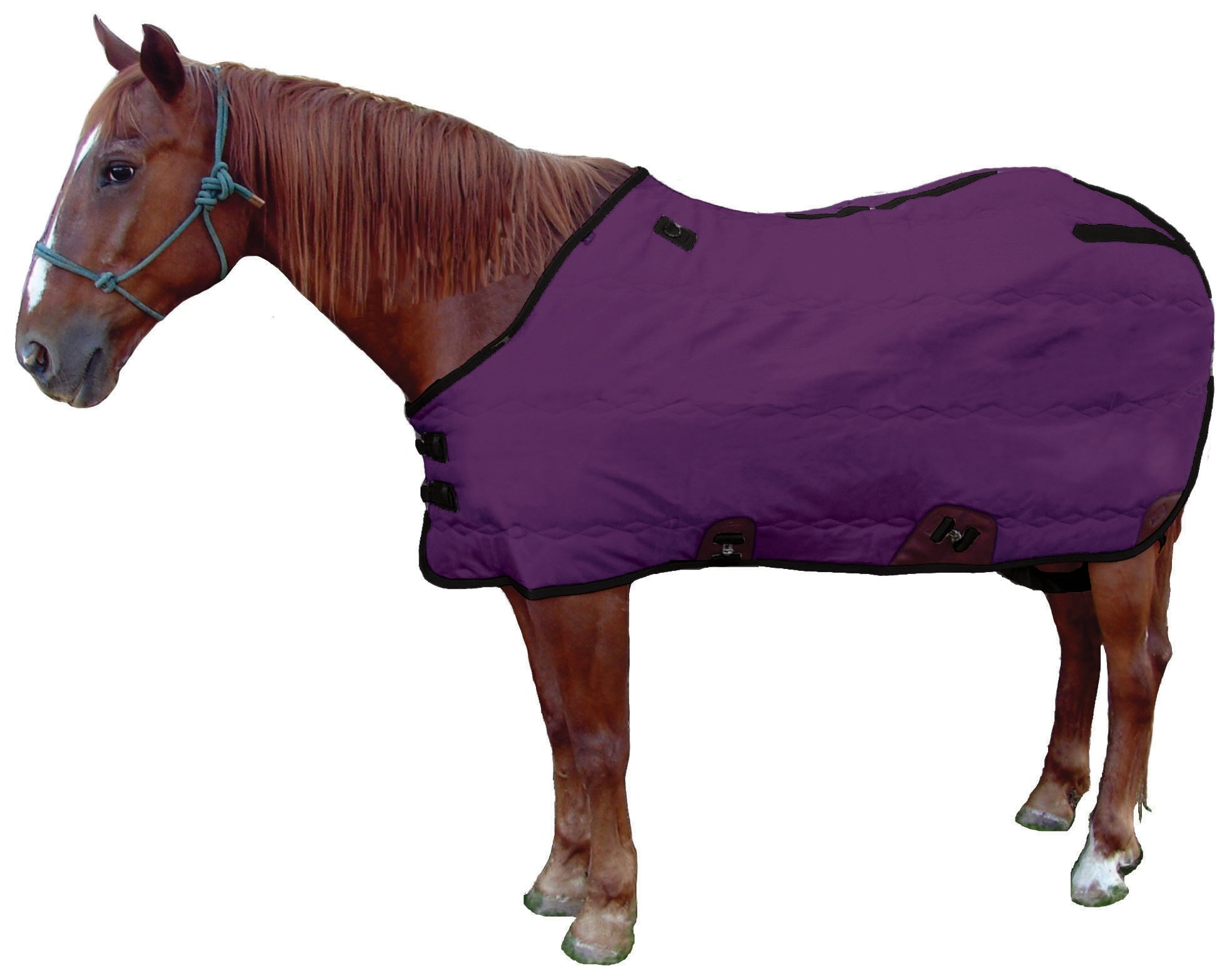 Royal Hamilton SB-420D-PR-S Stable Horse Blanket Purple with Gray Trim, 75-Inch Small by Royal Hamilton (Image #1)