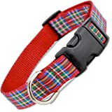 The Artful Canine Scottish Plaid Dog Collar, Royal Stewart Tartan, Medium Dogs, 22-35 lbs (Collar: 3/4 wide, 10-16 long)