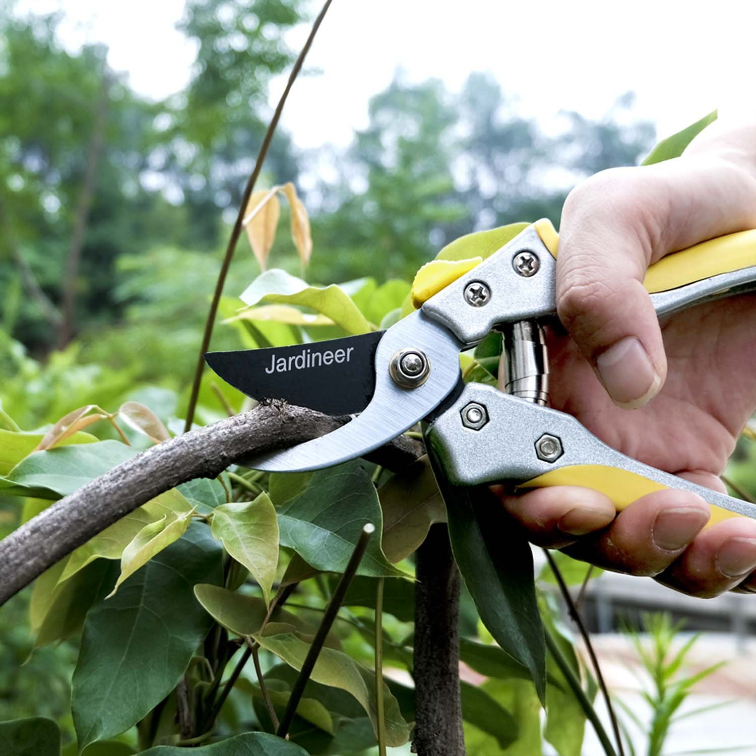 Jardineer Sharp and Durable Hand Bypass Pruners with Safety Lock, Tree Trimmers Secateurs, Garden Pruning Shears for Live Green Plants, Perfect Garden Clippers by Jardineer (Image #6)