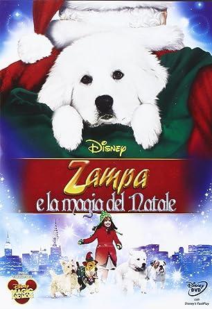Babbo Natale Zampa.Zampa E La Magia Del Natale Amazon It Somerville Pettis Film E Tv