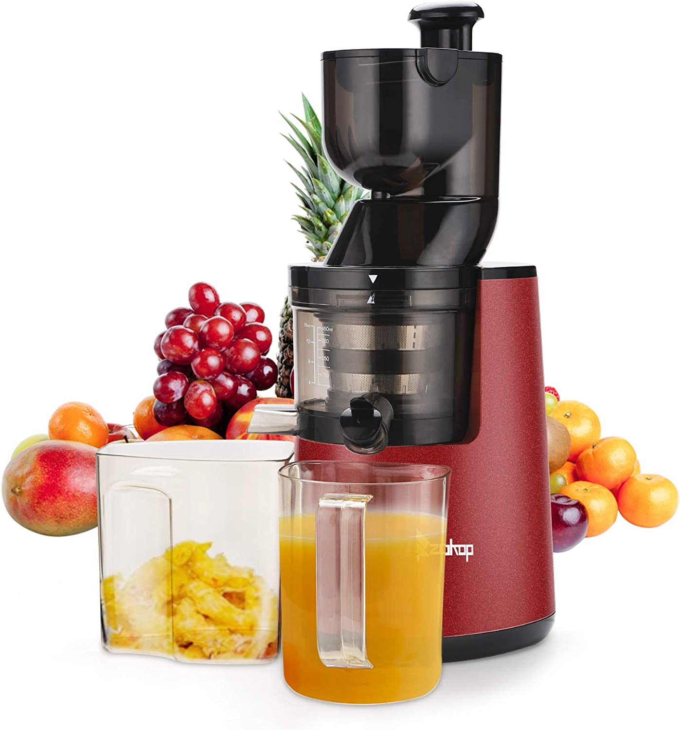 Juicer Machines Vegetable and Fruit, Slow Masticating Juicer Extractor Easy to Clean, Quiet motor and Reverse Function, Features Compact