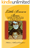 Little Brown Bear: Looking Through The Eyes of a Biracial Child Raised in Black America (English Edition)