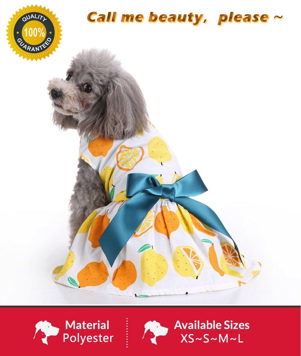 731438afa7c6 Summer Orange Dog Yellow Dress Stylish Ribbon Puppy Shirt for Small Doggy  Teddy