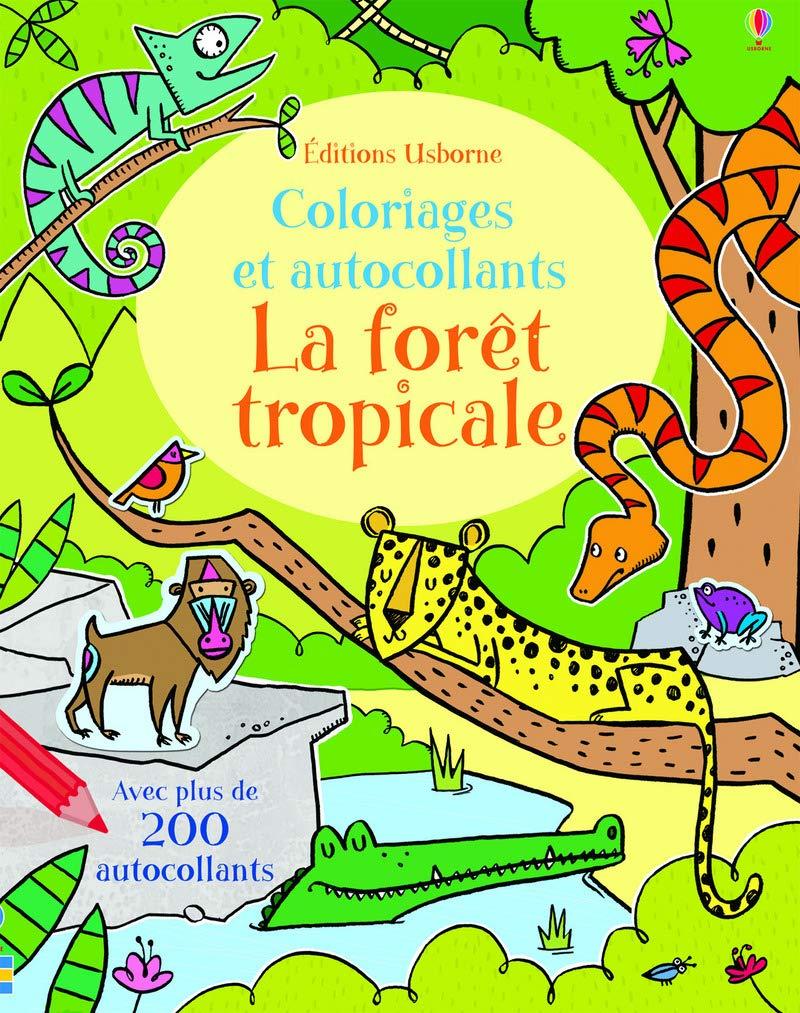 Coloriage La Foret Tropicale.La Foret Tropicale Coloriages Et Autocollants Amazon Fr