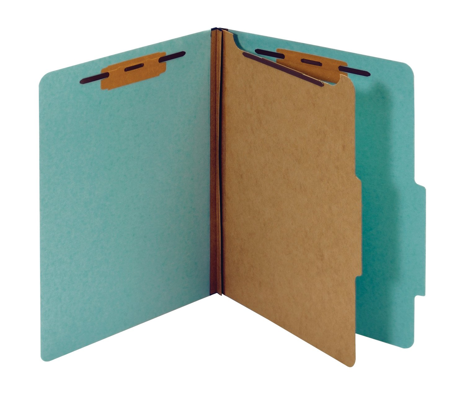 Globe-Weis/Pendaflex Classification Folder, Letter Size, 1 Divider, Light Blue, Pack of 20 Folders (PU41 LBL)