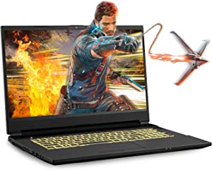 Sager NP6877EQ 17.3-Inch Thin Bezel FHD 144Hz Gaming Laptop, Intel i7-10750H, GTX 1650Ti 4GB, 16GB RAM, 500GB NVMe SSD, Windows 10