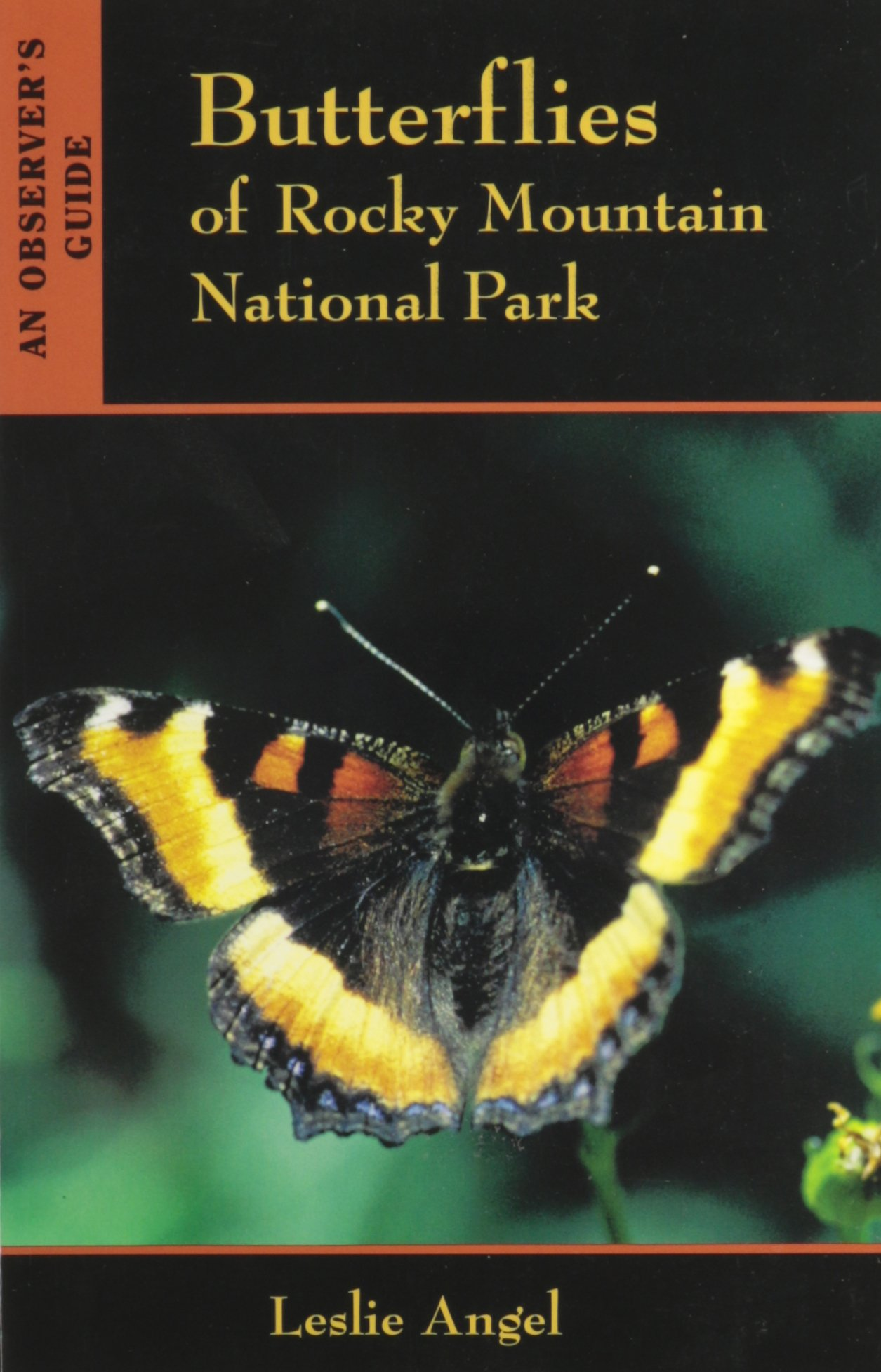 Butterflies Of Rocky Mountain National Park: An Observer's Guide pdf epub