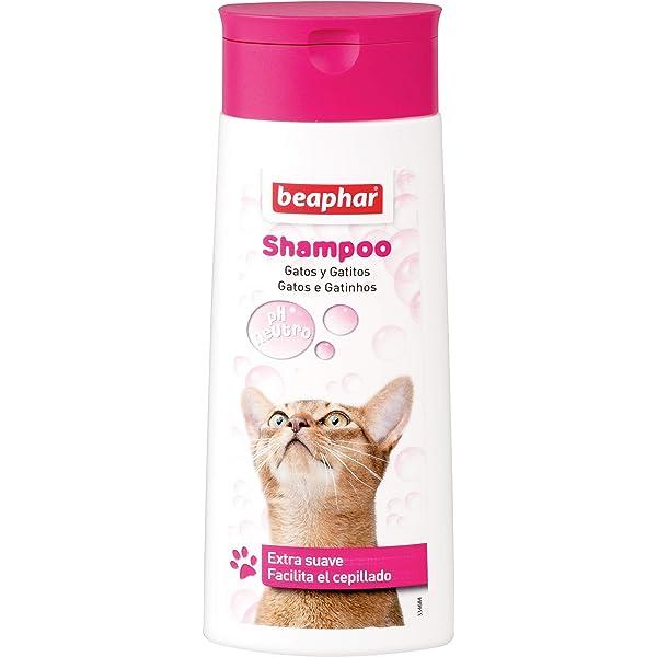 Beaphar BEA10652 Champú Gatos - 250 ml: Amazon.es: Productos para ...