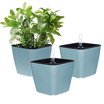 T4U 5.5 Inch Self Watering Plastic Planter with Water Level Indicator Pack of 3 - Blue, Modern Decorative Planter Flower Pot for House Plants, Herbs, Aloe, African Violets, Succulents and More: Garden & Outdoor