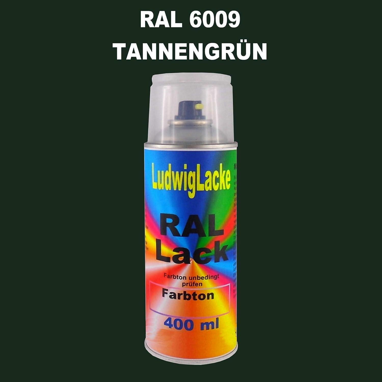 Ral 6009 Tannengrün Seidenmatt 400 Ml 1k Spray Auto