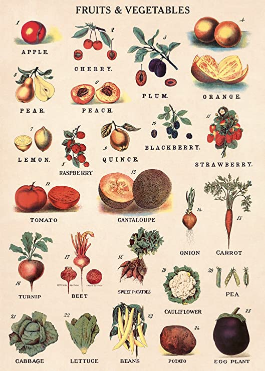 """Poster 19/"""" x 13/"""" Table Vegetables Fruits Nuts"""