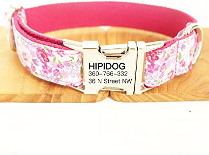 Rescued and Loved Dog Collar with Laser Engraved Personalized Buckle