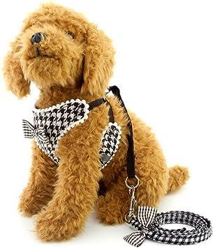 ranphy pequeño perro anti Tire Arnés para hembra macho perro arnés ...