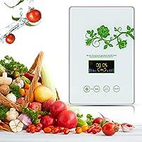 CAIYUE luchtreiniger ozongenerator, huishoudelijke ozongenerator 600 mg/u, zuiveren groenten, fruit, vlees, water en…