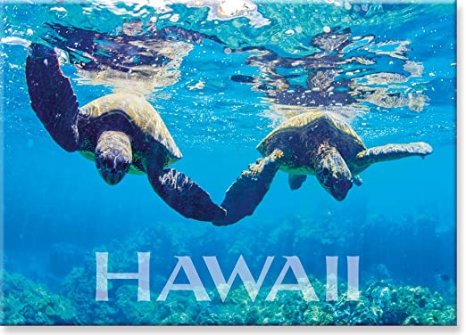 Emerald Sea by Michael /& Monica Sweet Panoramic Hawaiian Art Collectible Refrigerator Magnet