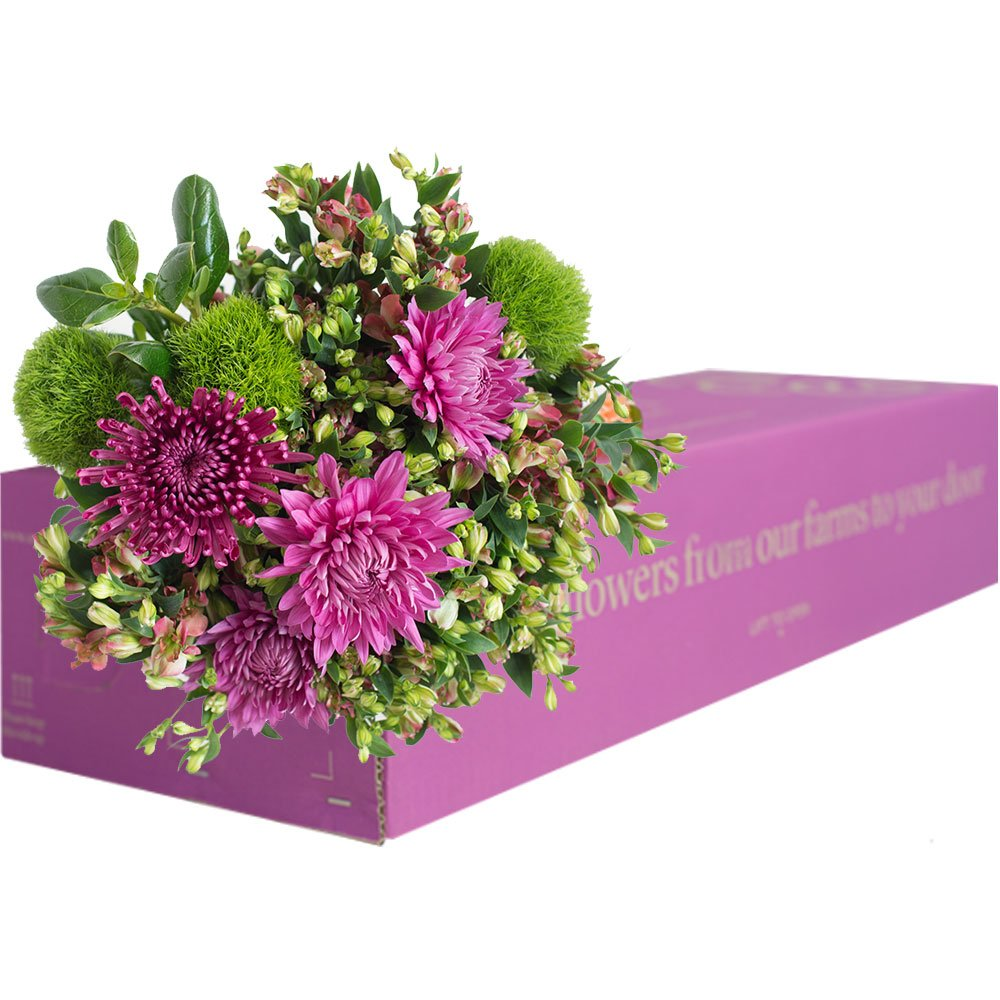 15% OFF: Enjoy Flowers - 3 Months Flower Subscription with Free Delivery. Farm Fresh Freshly Cut Mixed Flowers, Limited Time Offer!