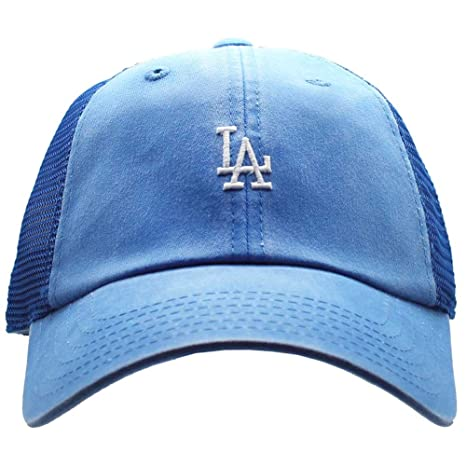 c52b695702a Amazon.com   American Needle Los Angeles Dodgers Raglan Bone Micro ...