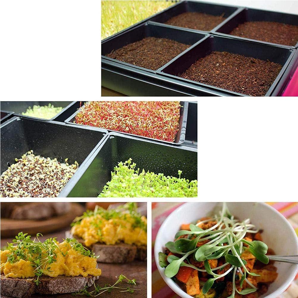 Mesh Bottom 1020 Trays Wheatgrass 10 Pack Extra Strength for Microgreens rosemaryrose Nursery Tray Soil Blocks Hydroponic and Fodder