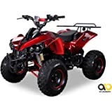 Kinder Elektro Quad S-10 1000 Watt Miniquad Metallic Rot