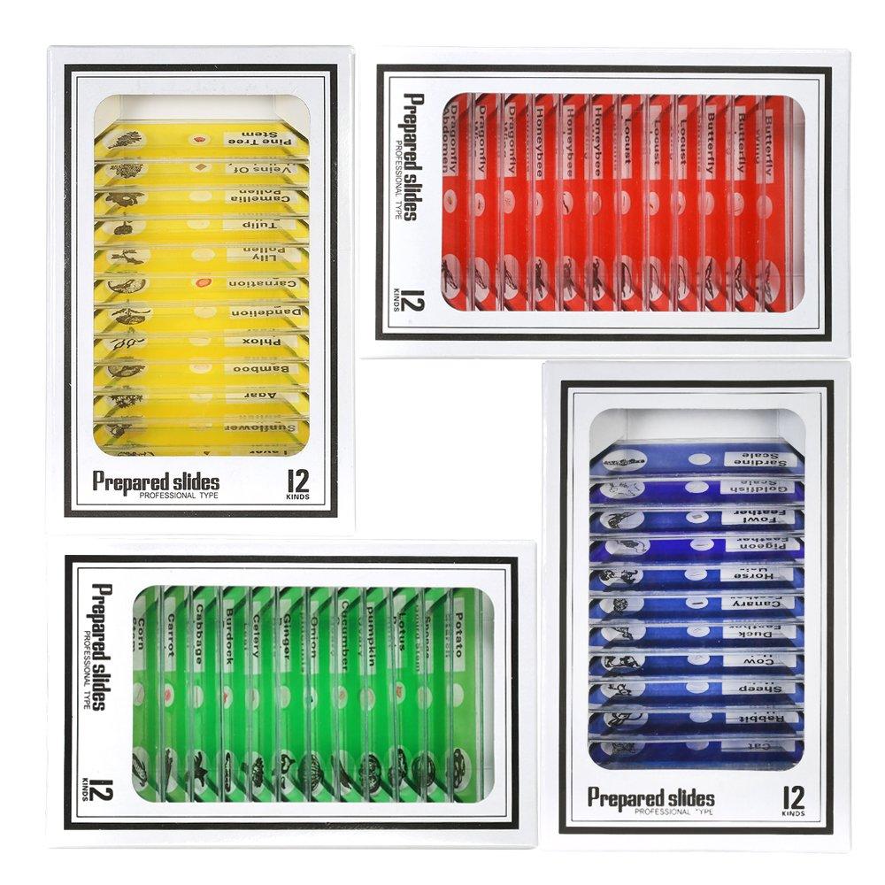 KKmoon 48pcs/set plá stico microscopio preparado diapositivas animales insectos plantas muestra muestras diapositivas Set con etiquetas de colores para niñ os estudiantes
