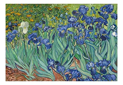 Wall26 Irises By Vincent Van Gogh Dutch Impressionism 20th Century Artist Peel And Stick Large Wall Mural Removable Wallpaper Home Decor