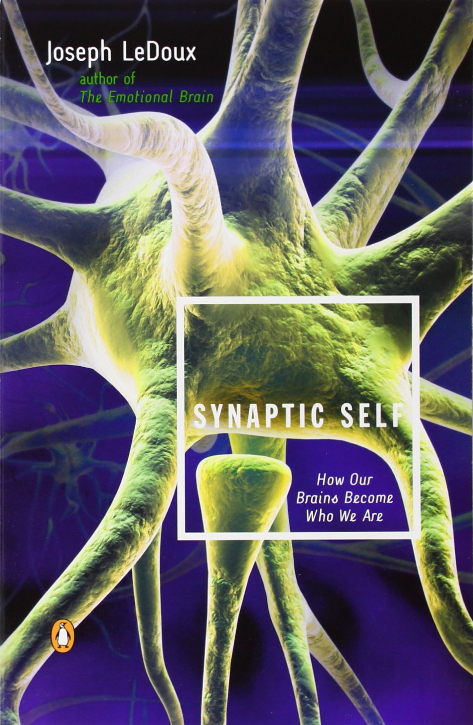 Synaptic Self How Brains Become