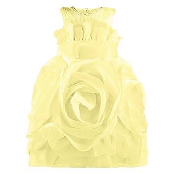 Katara Vestido de fiesta, disfraz para niña, gasa transparente, diseño de rosa amarillo