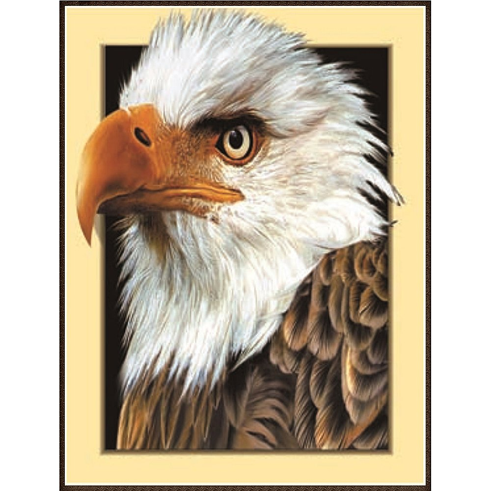 3D Stereoscopic Eagle 5D Diamond Painting by Numbers parziale drill kit ricamo a punto croce Craft DIY Art Home Wall Decor (35, 1  x 45, 2  cm) 1 x 45 2 cm) HEWADY
