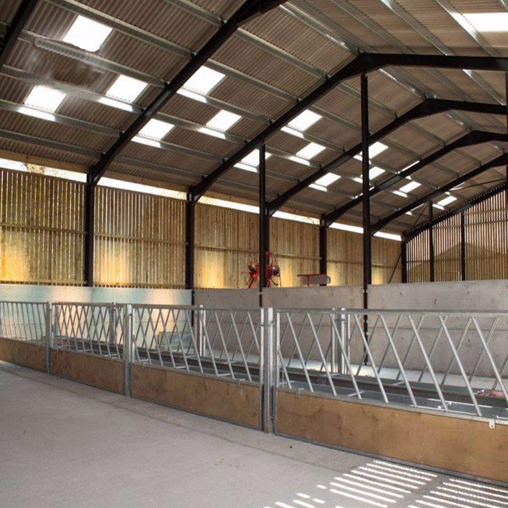 Weizhengheng Estructura de acero para aves de corral y casa prefab para casa de gallinas: Amazon.es: Hogar