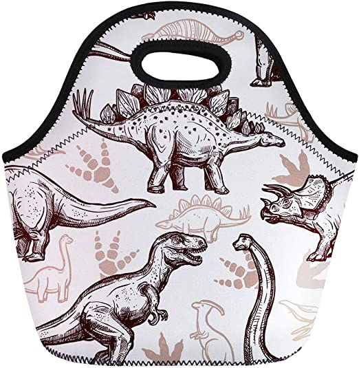 back to school snacks gift boys Prehistoric dinosaur bentos lunch box picnic