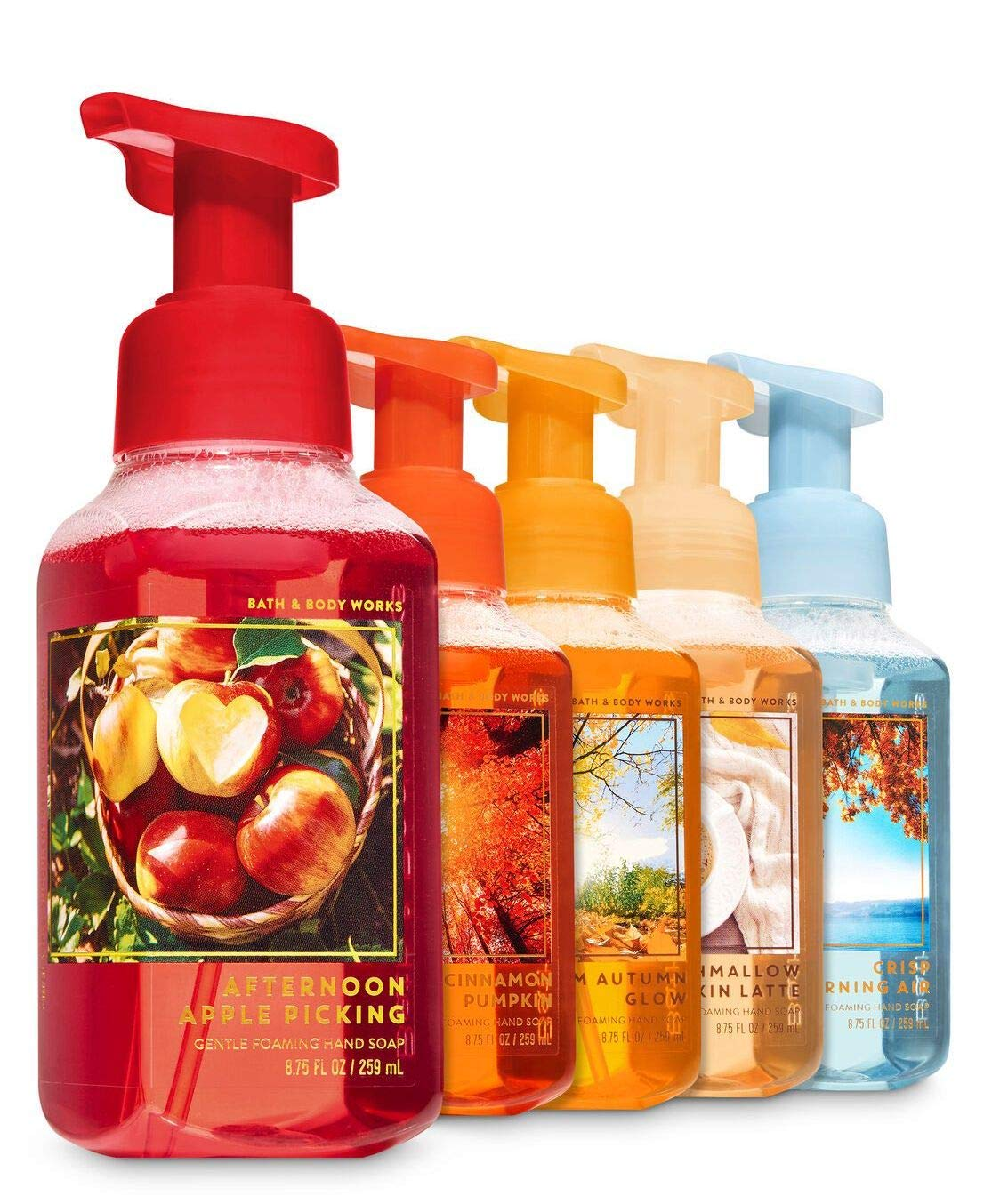 Bath and Body Works Fall Favorites - Set of 5 Foaming Hand Soaps - Sweet Cinnamon Pumpkin, Marshmallow Pumpkin Latte, Crisp Morning Air, Afternoon Apple Picking, Warm Autumn Glow : Beauty