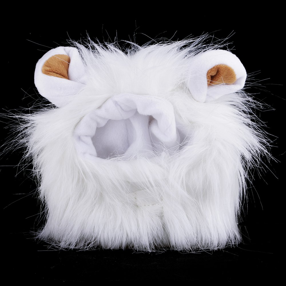 GGG Fancy Pet Hund Hat Kostü m waschbar leicht Lö we Mä hne Perü cke fü r Katze Halloween Kleid bis mit Ohren Gogogo