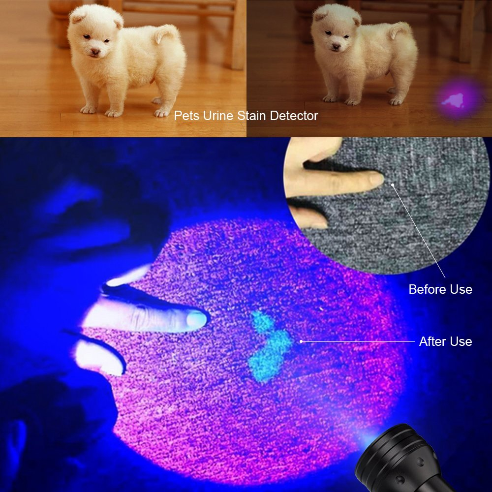 Black Light UV Flashlight/Pet Urine Detector, 51 LED Professional Grade 395NM Ultraviolet Light Detector for Dog/Cat Urine, Dry Stains,Bed Bug,Stain Detection Best for Commercial/Domestic/Hotel Use by VOCH (Image #3)