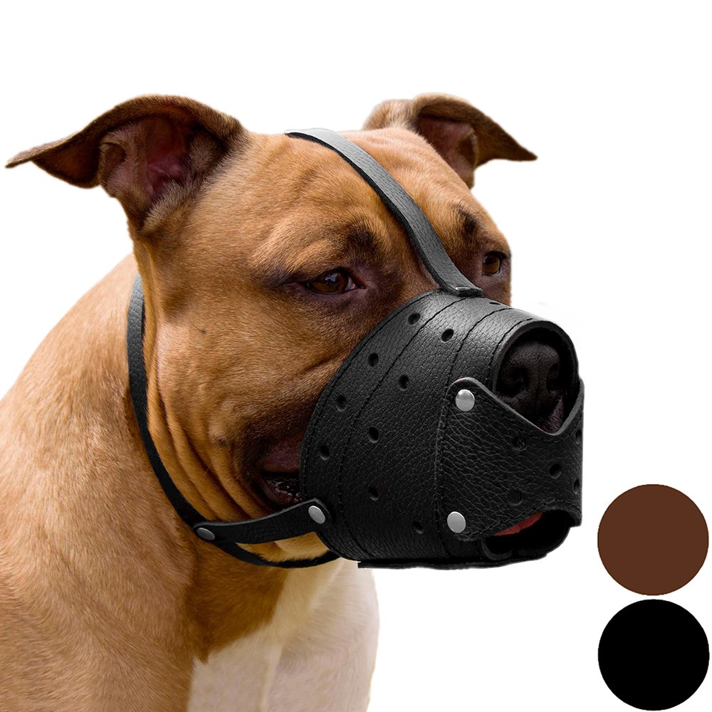 CollarDirect Pit Bull Pitbull Terrier Secure Basket Dog Muzzle Genuine Leather Staffordshire Terrier (Black) by CollarDirect