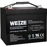 Weize 12V 75AH Deep Cycle Battery for Wayne ESP25 WSS30V Backup Sump Pump, Trolling Motor, Solar System, Mobility…