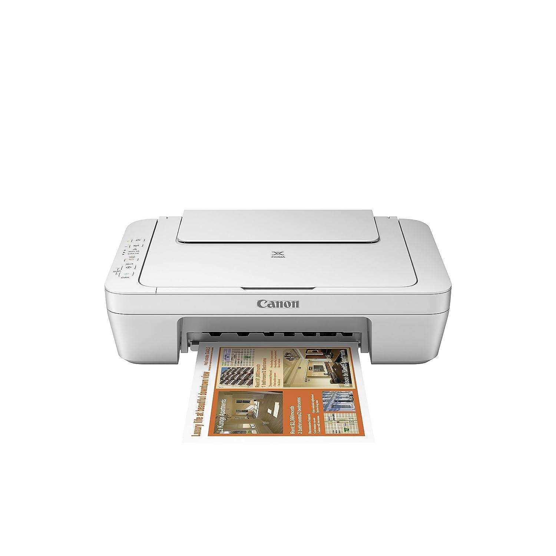 Canon PIXMA MG2950 - Impresora multifunción (Inyección de ...