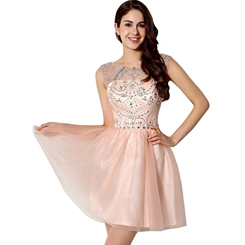 Clearbridal Womens Short Prom Dresses 2018 Tulle Sheer Neck Blush Homecoming Dresses Ball Gown With Beads