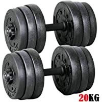 20kg Dumbbells Set Dumbells Weights Home Gym Fitness Training Biceps Barbell Bar -2 Sets