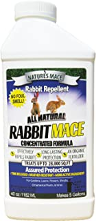 product image for Nature's Mace Rabbit Mace 40oz Concentrate/Covers 28,000 Sq. Ft. / Rabbit Repellent and Deterrent/Keep Rabbits Out of Your Lawn and Garden/Safe to use Around Children & Plants