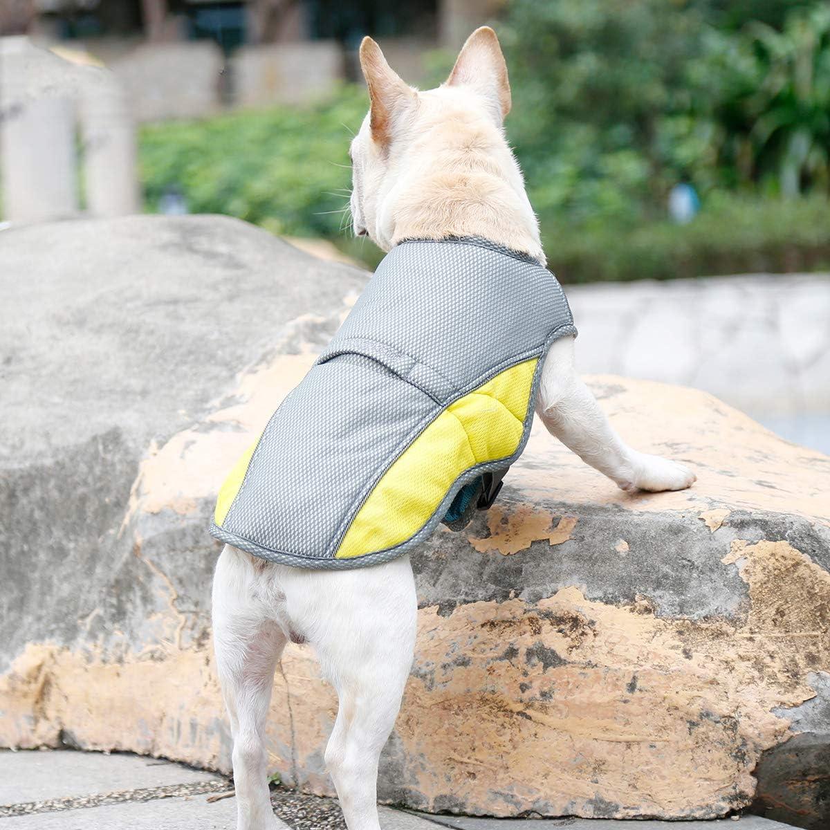 Penivo Sommer Cool Dog Harness f/ür Kleine mittelgro/ße Hunde Einstellbare K/ühlweste Kleidung EIS Hundehalsband