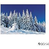 Plastic Winter Scene Backdrop Banner