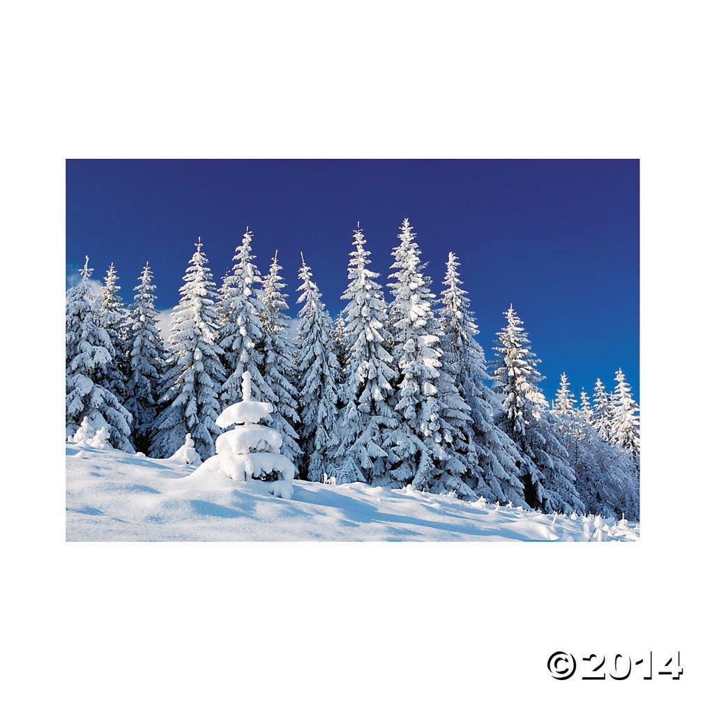Plastic Winter Scene Backdrop Banner Fun Express 923709