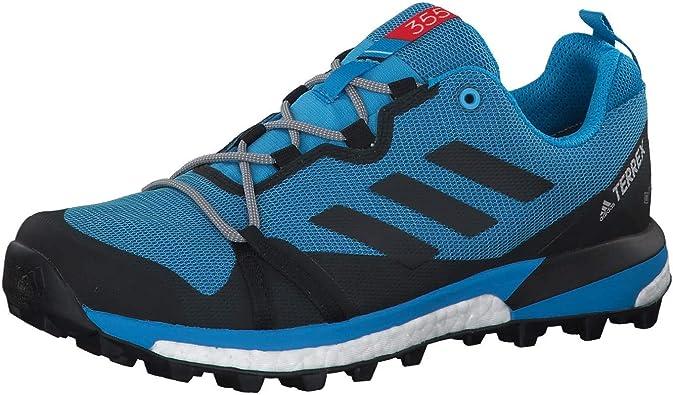 Adidas Terrex Skychaser LT Gore-Tex Zapatilla De Correr para Tierra - SS19-44: Amazon.es: Zapatos y complementos